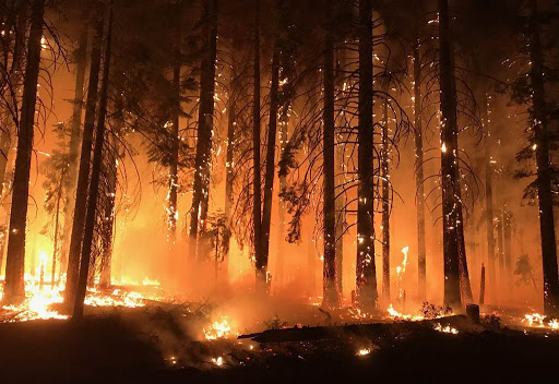 Updates from the Recent California Wildfire