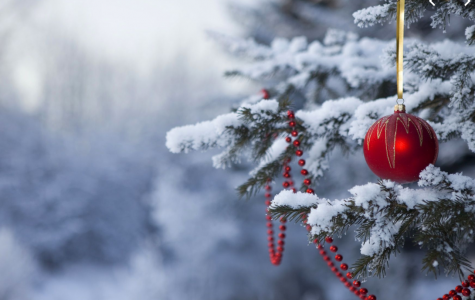 Winter & Holiday Poems