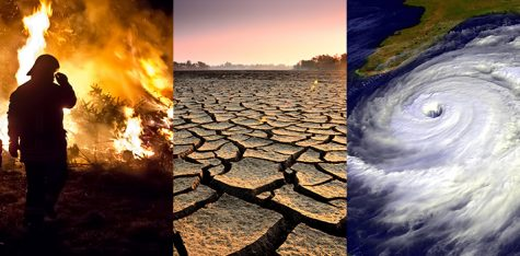 Is climate change linked to the extinction of ancient humans?